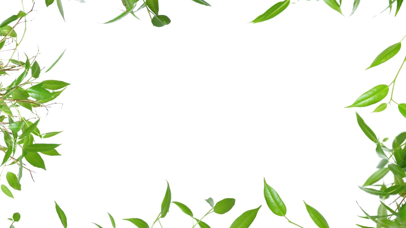 branches frame, Leafy border background photos download #2445