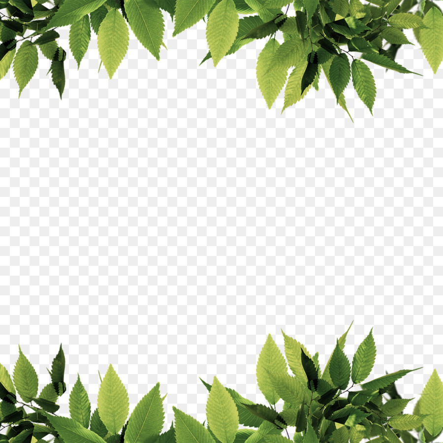 nature Bottom and top leaf border ppt background free download #2433