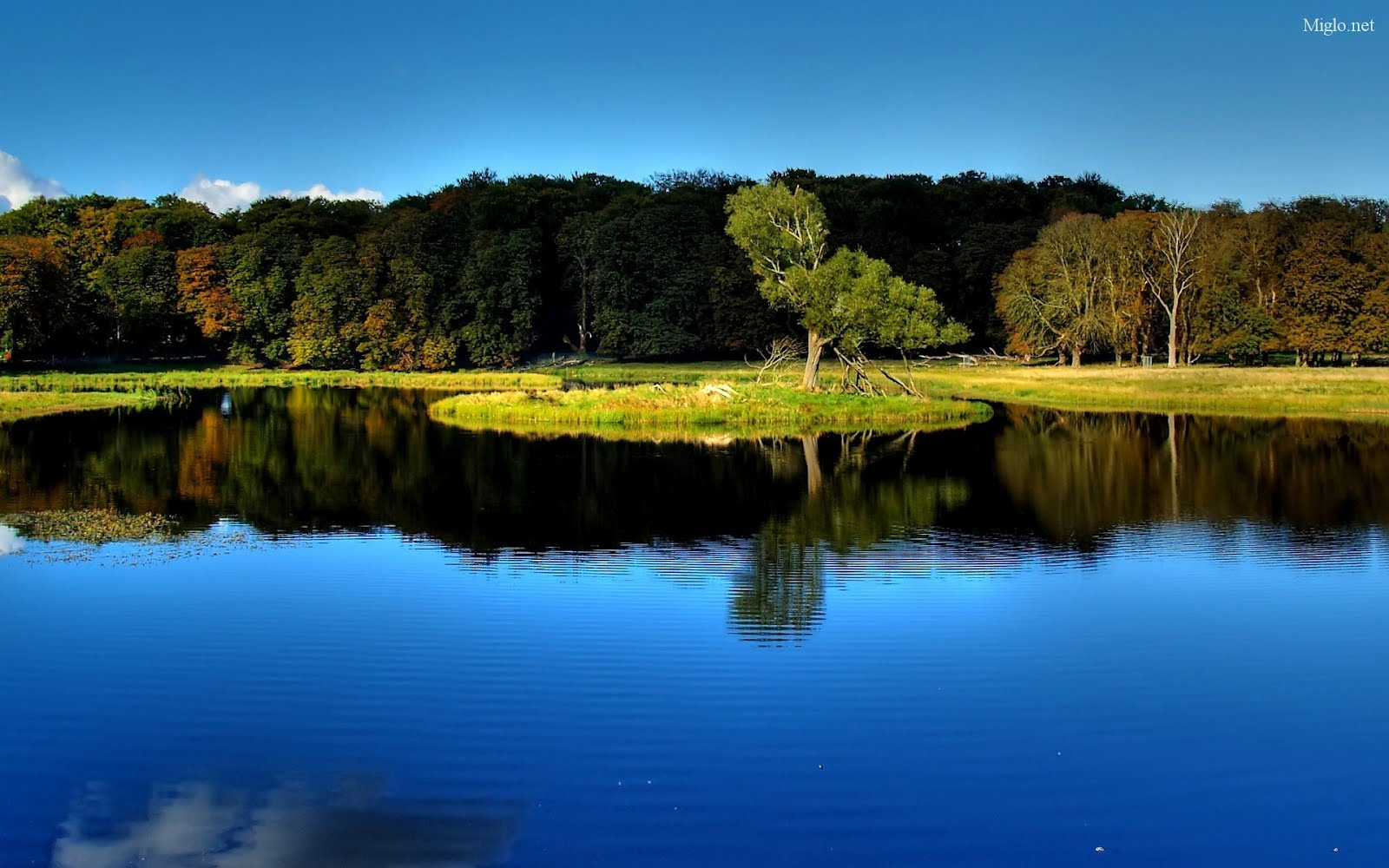 park nature photo backgrounds download, Lake, tree #1572