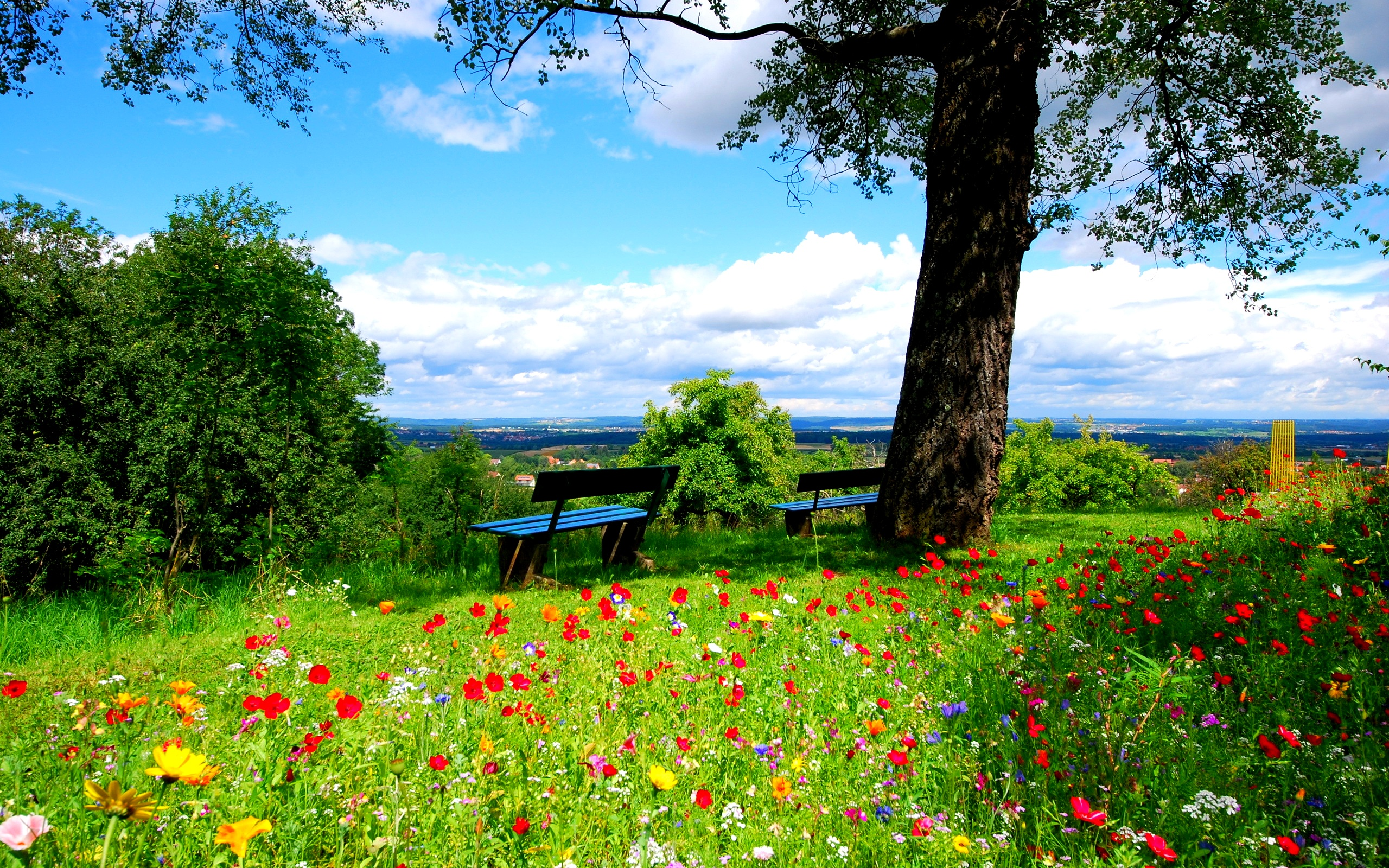 beautiful landscape nature background hd free #1588