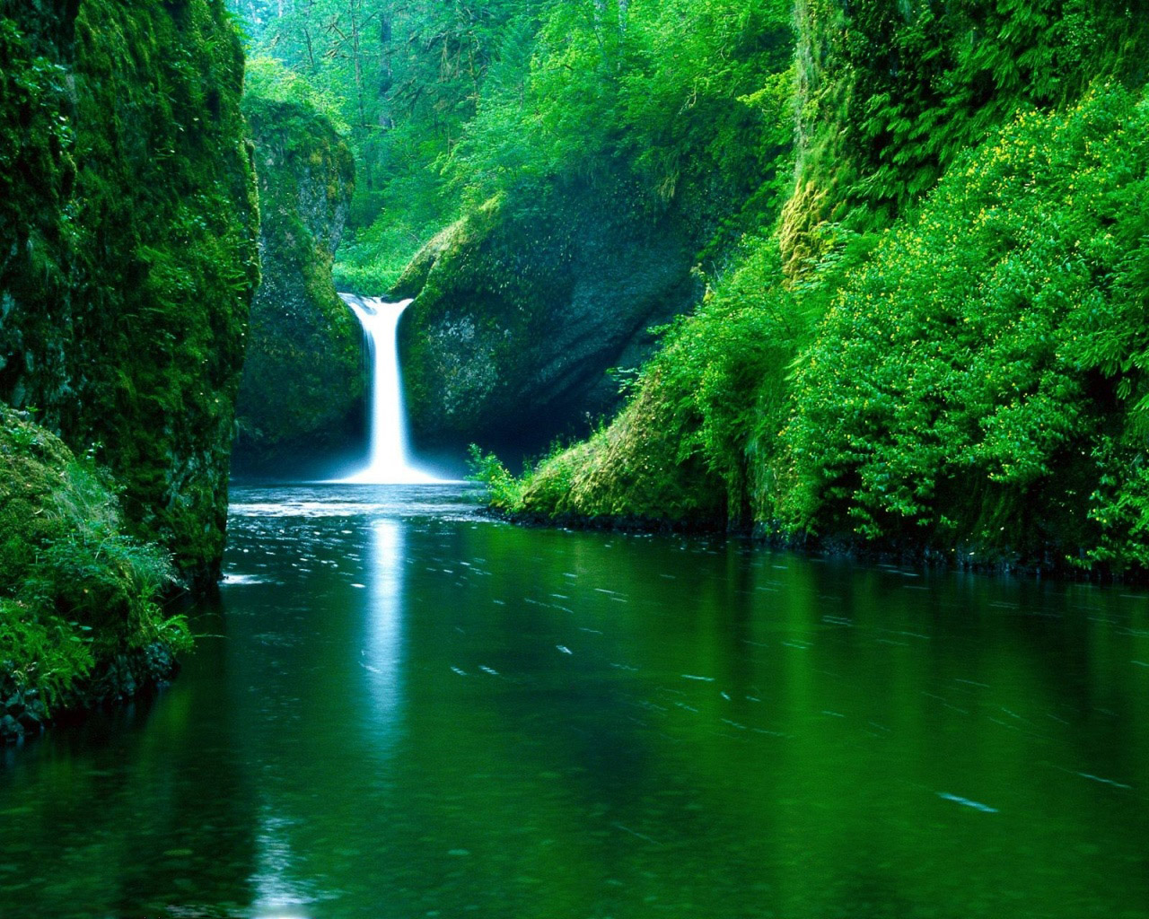 green stream nature wallpapers background #1567
