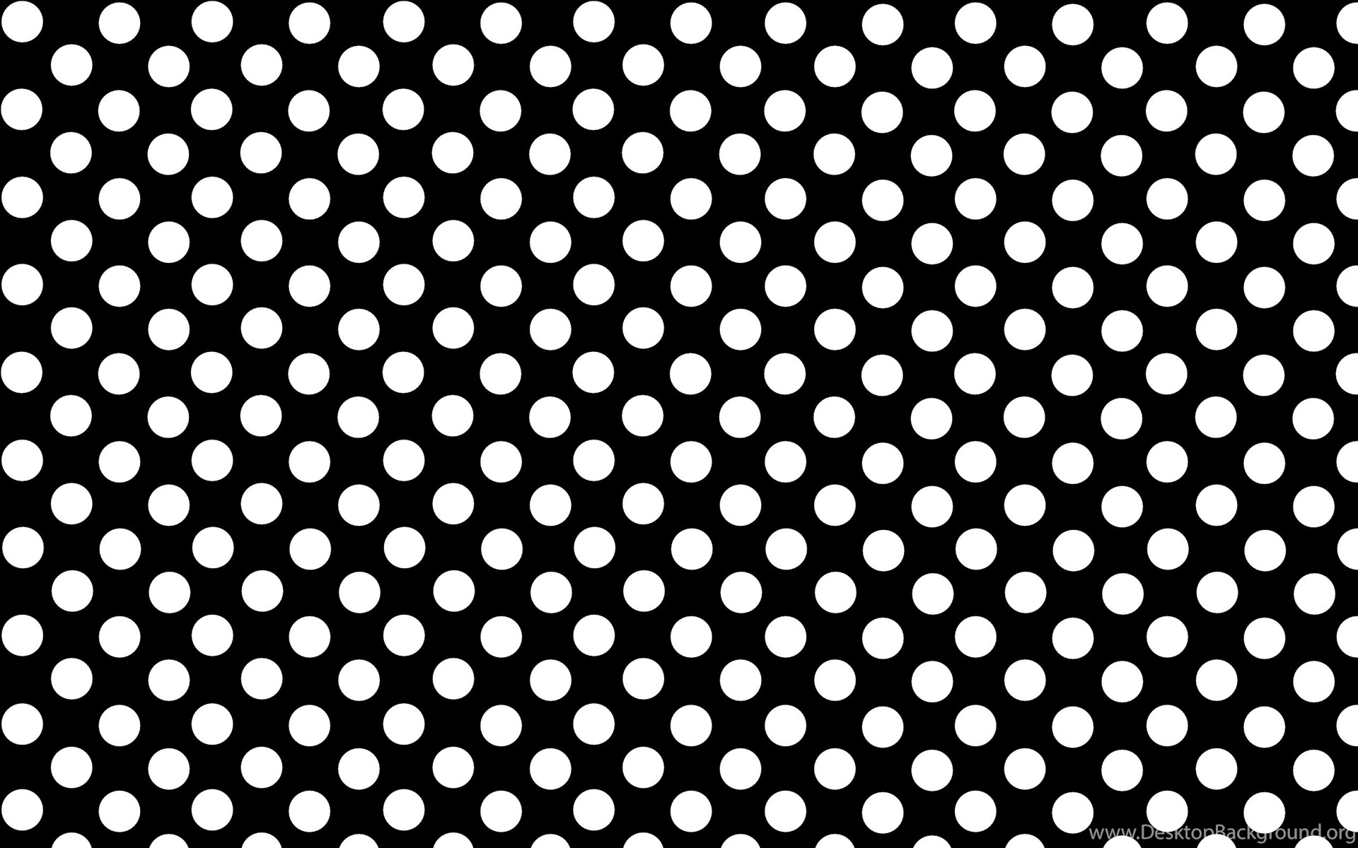 black white polka dots powerpoit backgrounds #3445