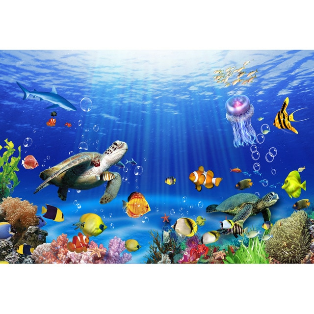 Marine animals, sea wallpapers hd download #2163