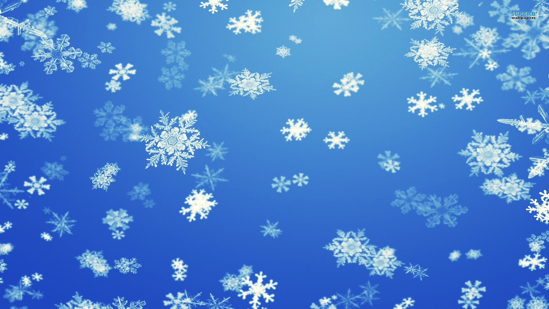 blue beautiful snowflake powerpoint template download #1645