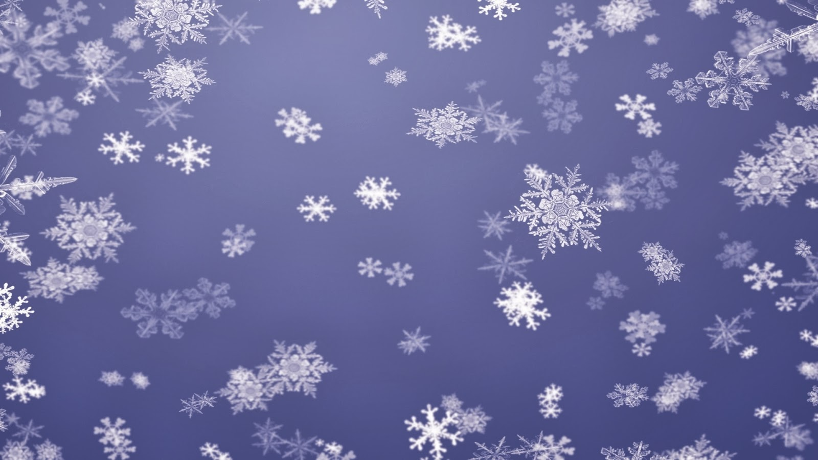 great purple snowflake ppt photos free download #1641