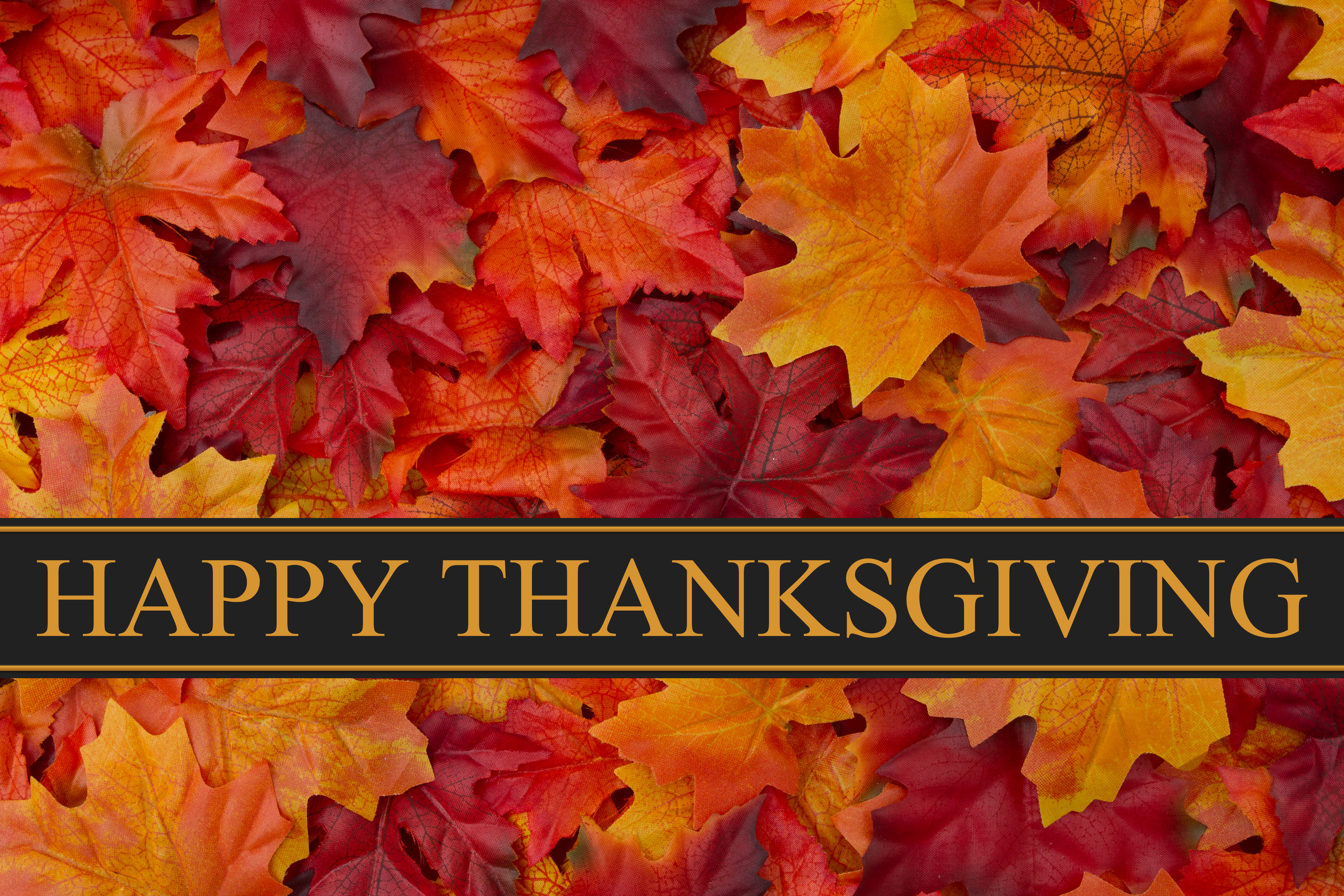 happy thanksgiving background with autumn leaves #1726