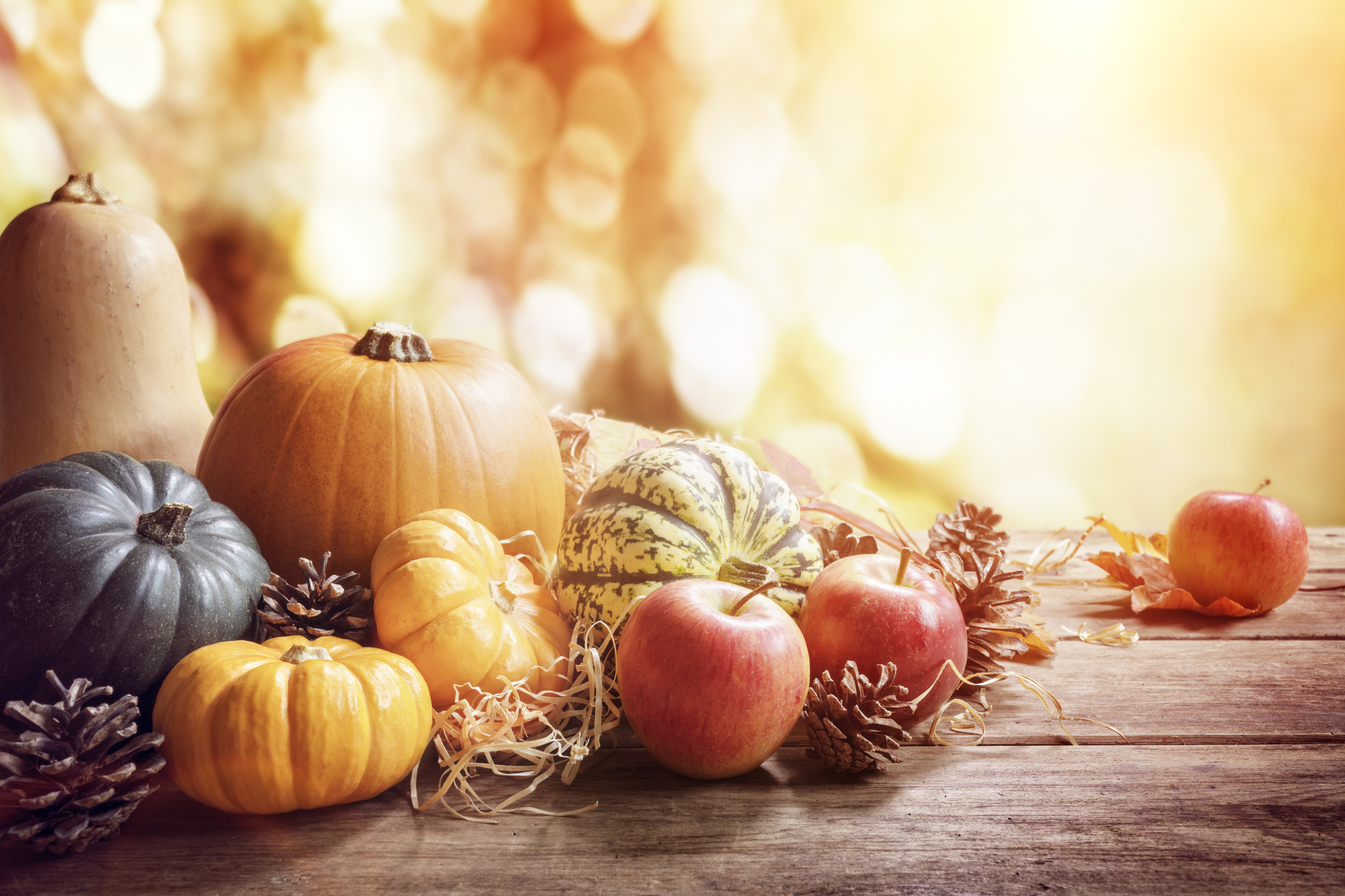 celebration thanksgiving ppt background templates #1725