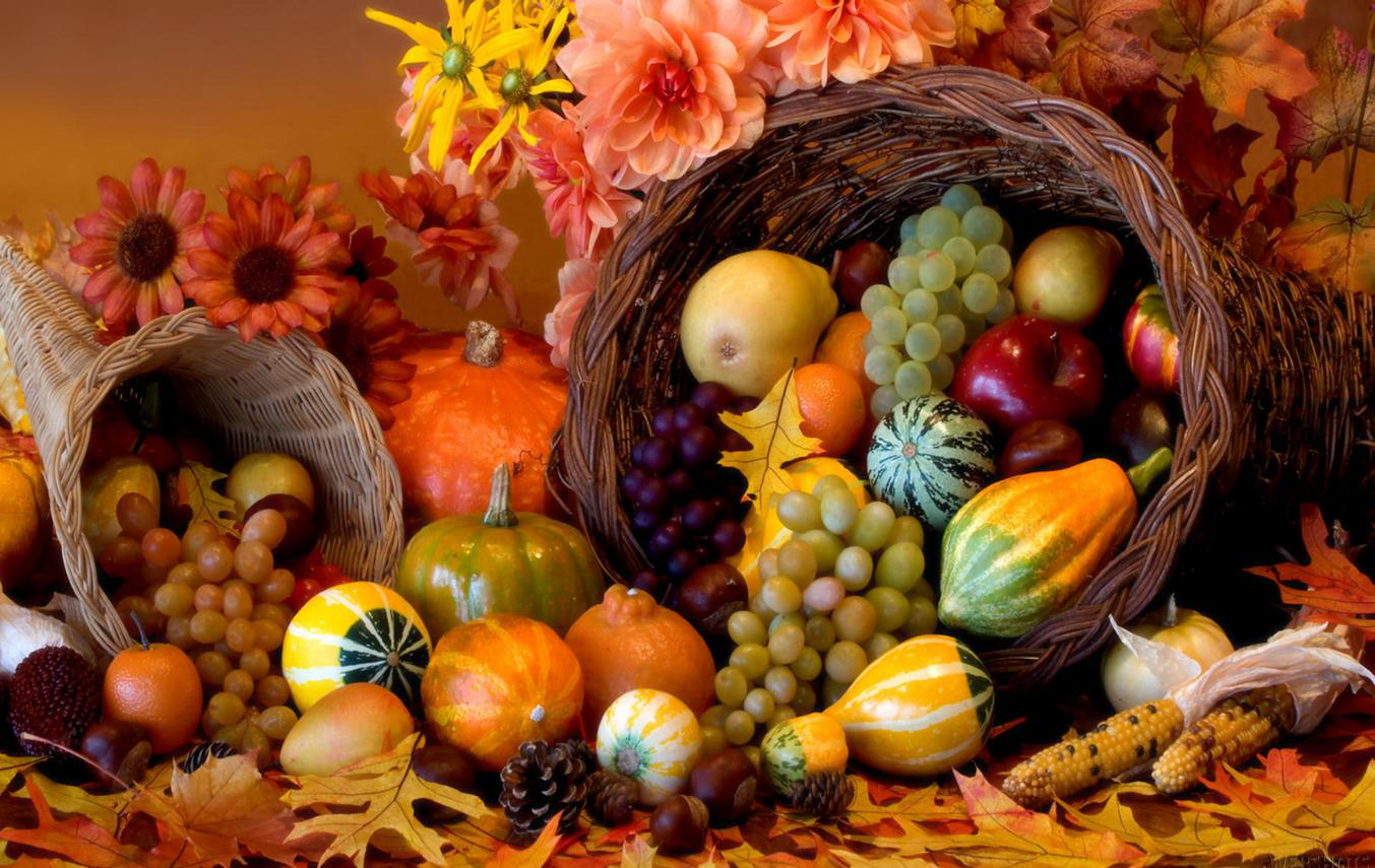 mixed fruits thanksgiving background hd free download #1697