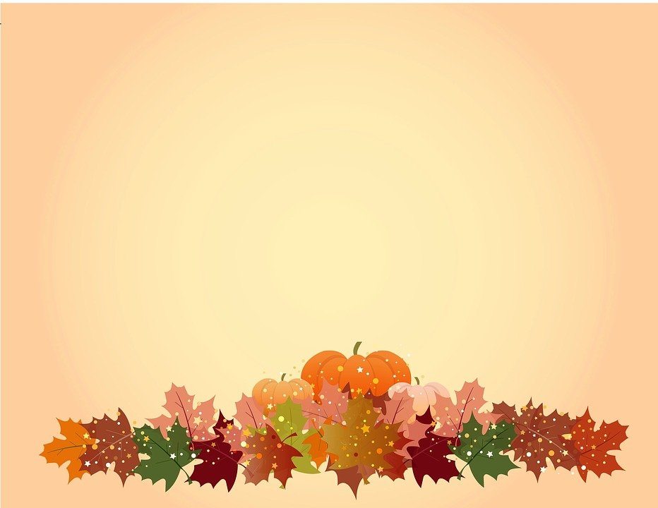 pumpkin, leaves, thanksgiving background photo #1727