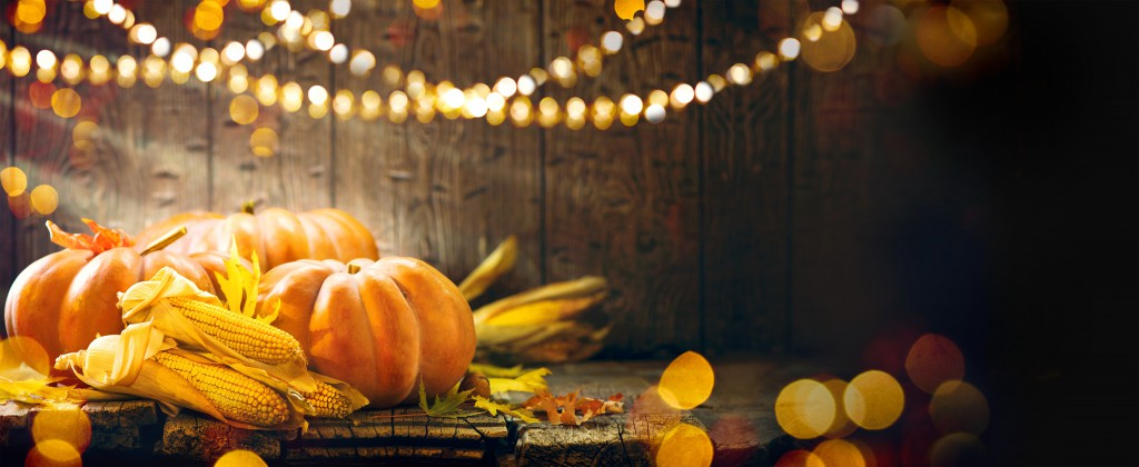 with led lamp thanksgiving hd backgrounds, fruits #1706