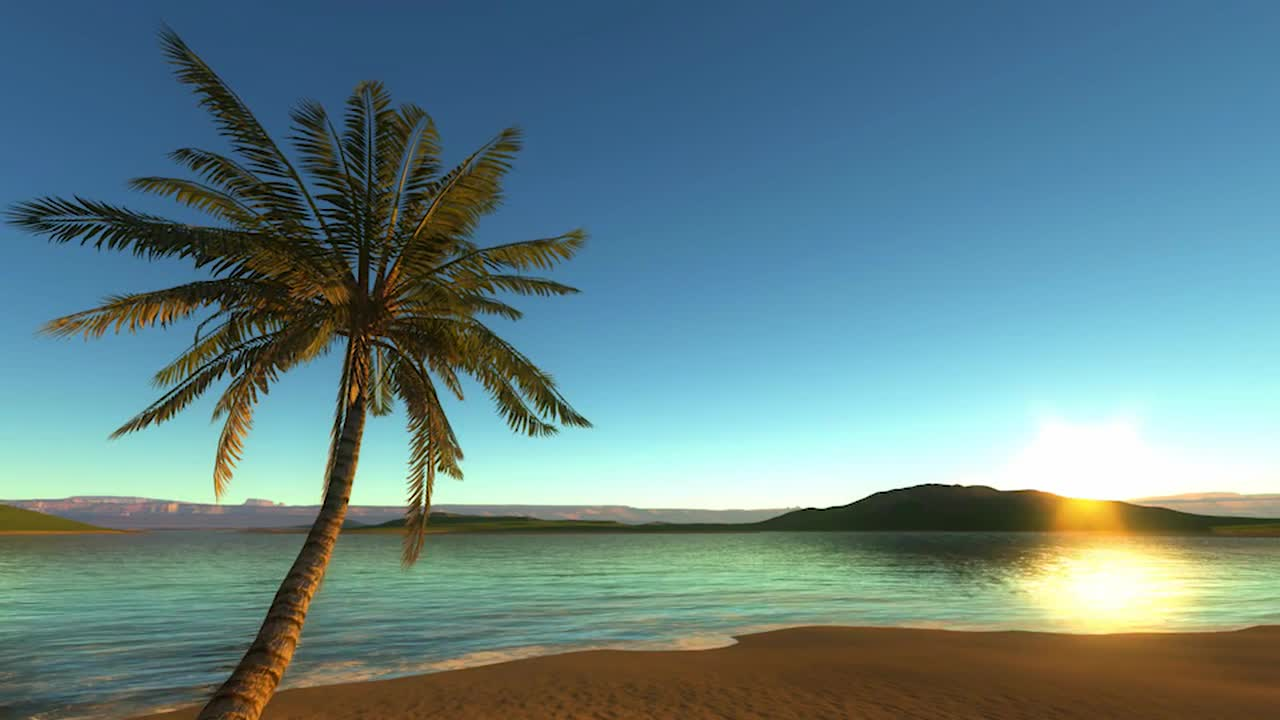 setting tropical beach motion graphics #142