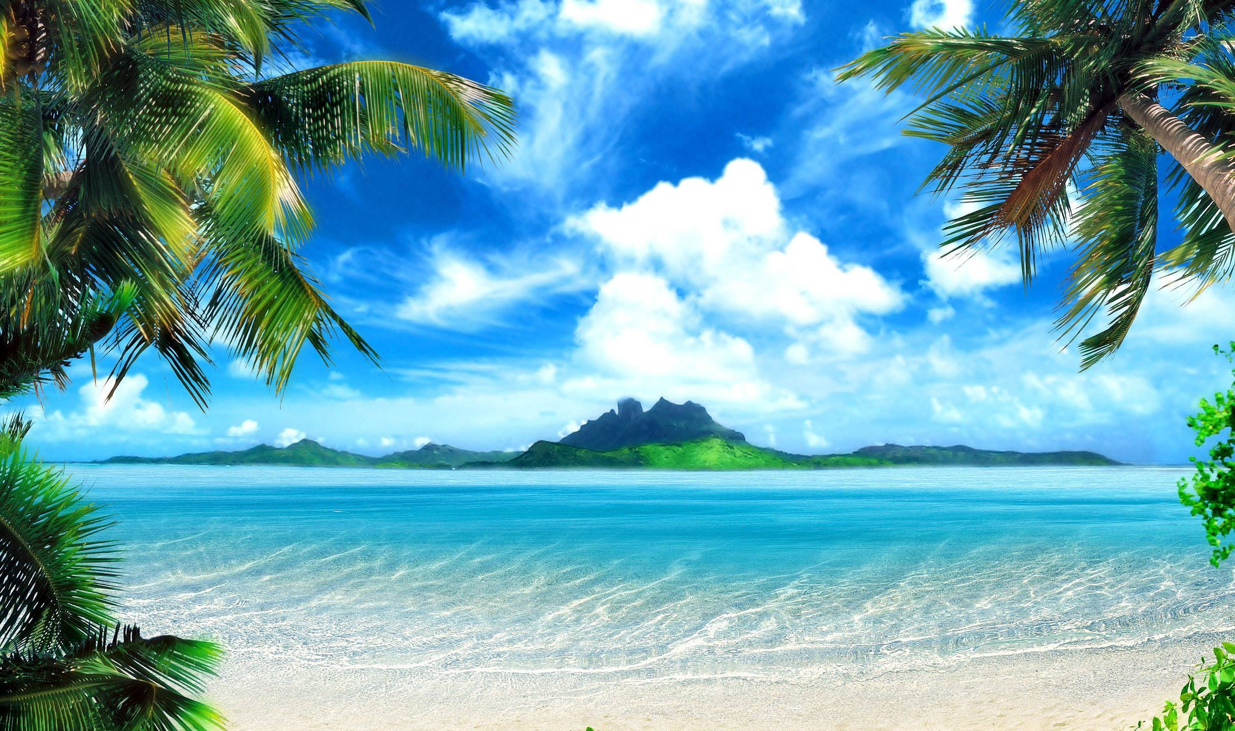 tropical background pictures images #137