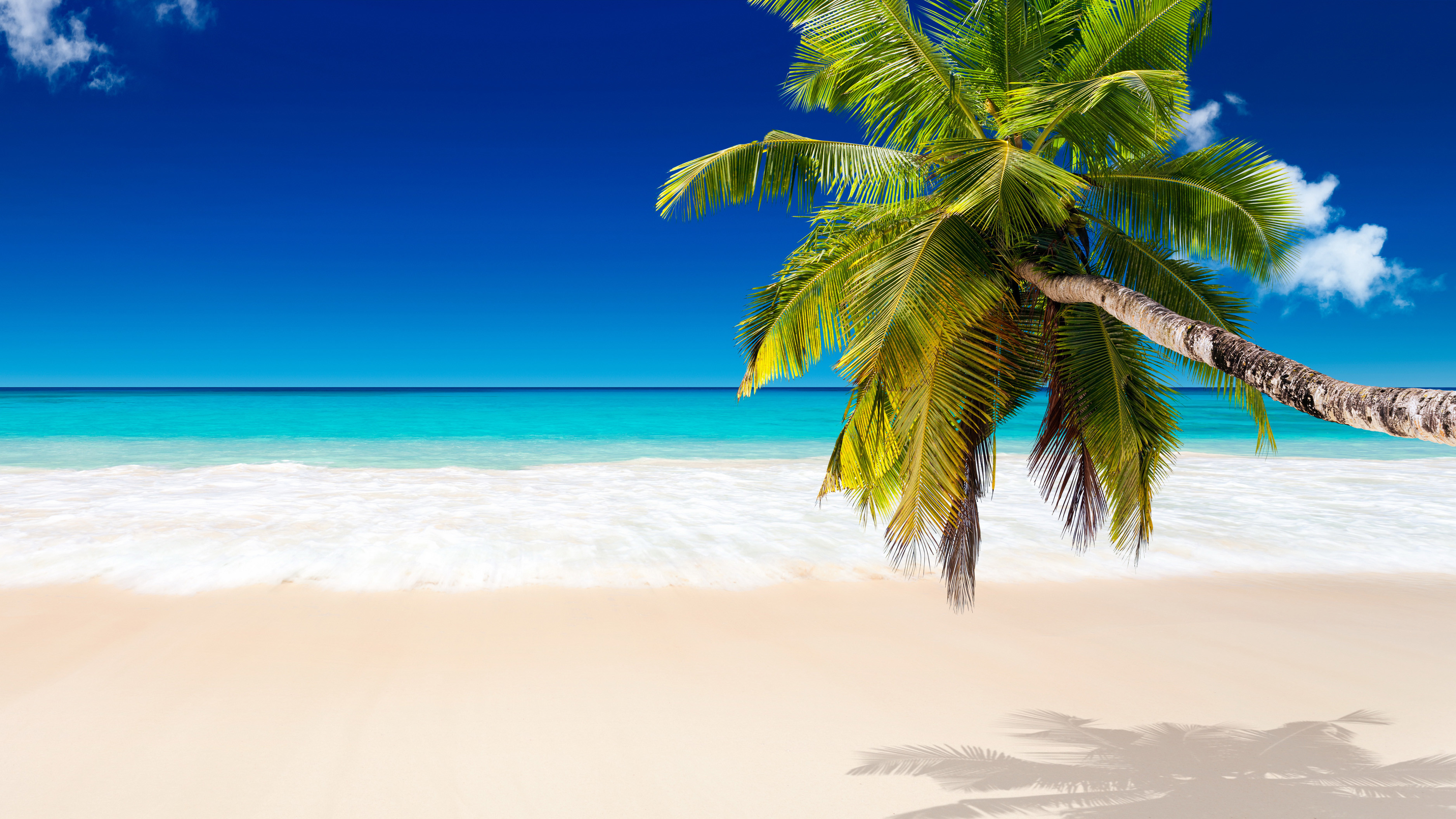 tropical beach background images #136
