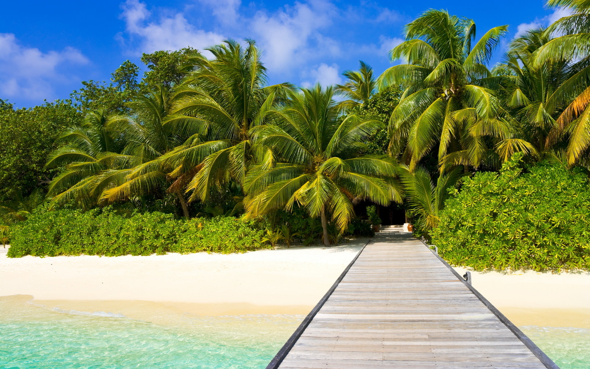 tropical beach backgrounds wallpapers images #143