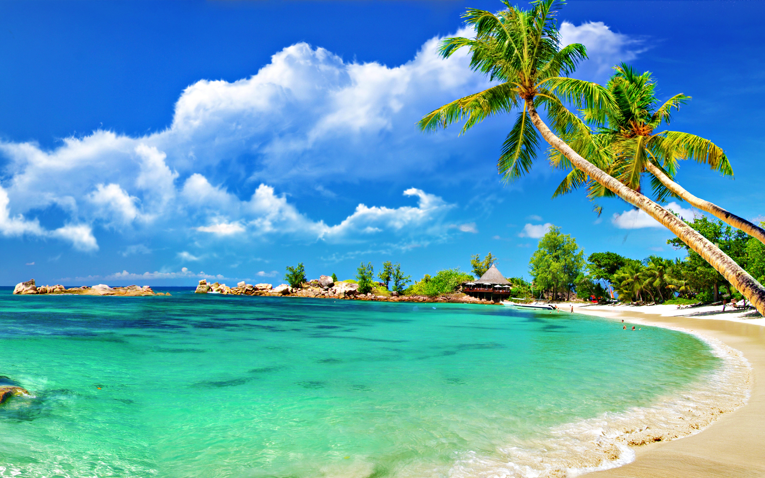 tropical incredible collection beach wallpapers funpulp #133