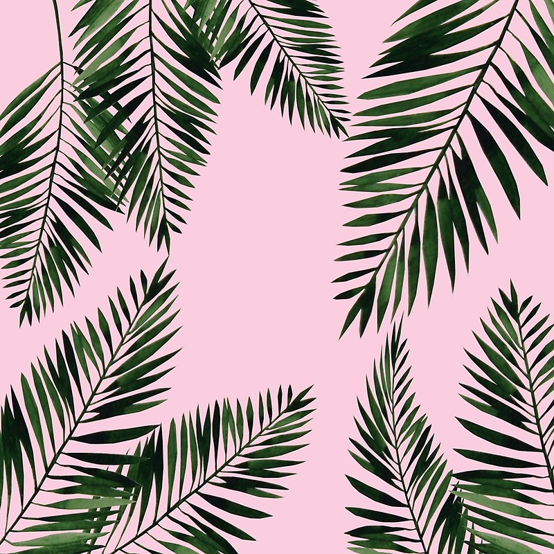 tropical leaves quot watercolor tropical palm leaves pink background quot #166