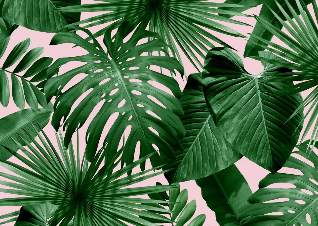 tropical leaves wild thing flavor paper #156