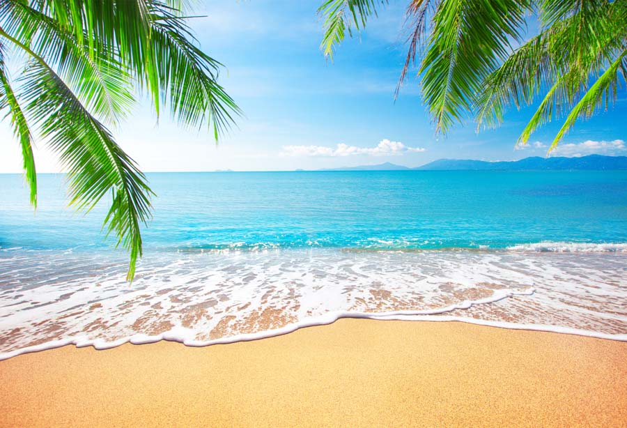tropical seascape photography backdrops beach photo background #122