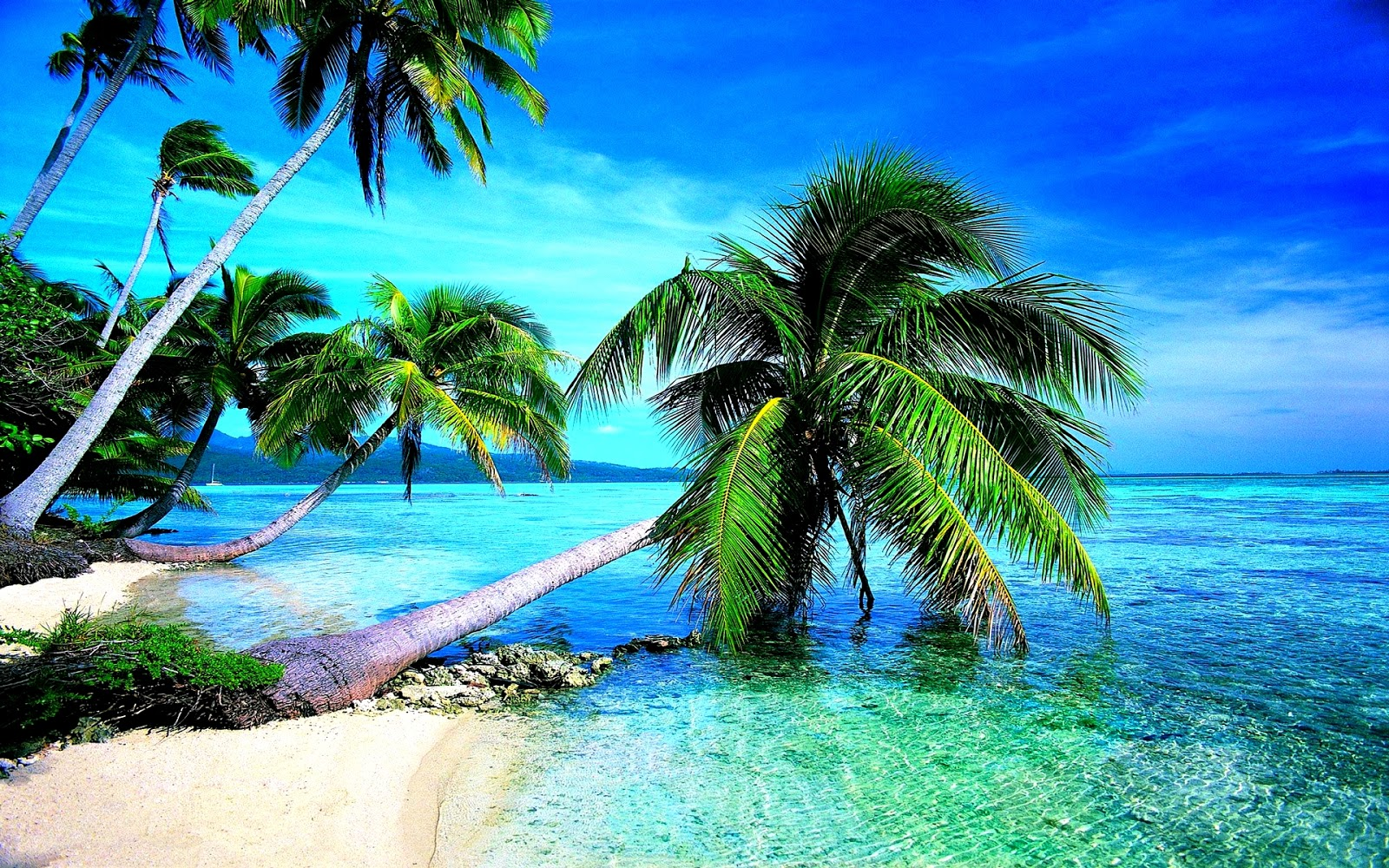 tropical studio backgrounds most beautiful beaches #132